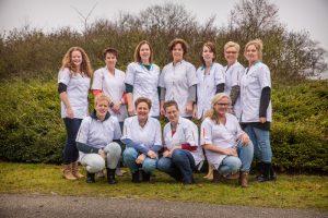 Wijkverpleging Team Den Ham Zuid